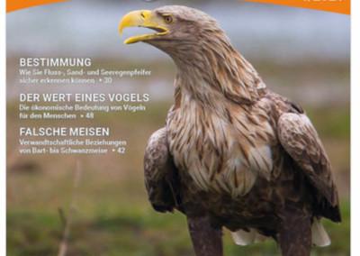 "Seeadler: ""Vögel Heft 1-21"""